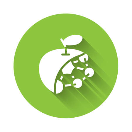 White Biological structure icon isolated with long shadow. Genetically modified organism and food. Green circle button. Vector