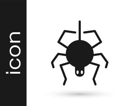 Black Spider icon isolated on white background. Happy Halloween party. Vector