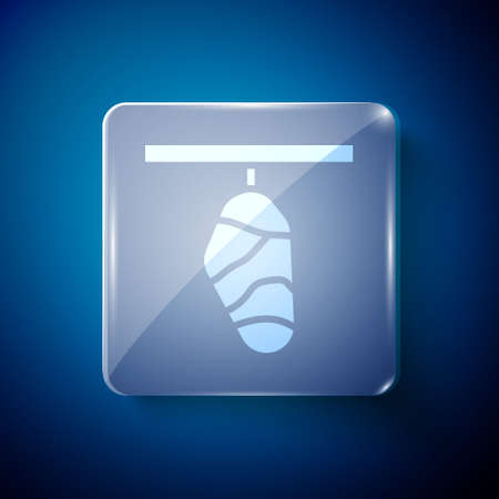 White Butterfly cocoon icon isolated on blue background. Pupa of the butterfly. Square glass panels. Vector