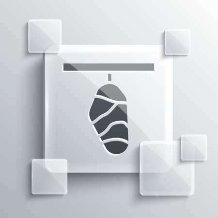 Grey Butterfly cocoon icon isolated on grey background. Pupa of the butterfly. Square glass panels. Vector 向量圖像