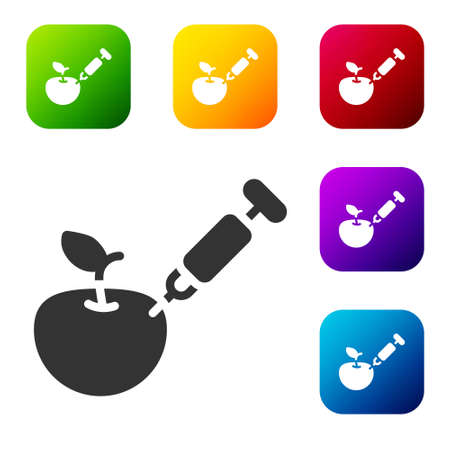 Black Genetically modified apple icon isolated on white background. GMO fruit. Syringe being injected to apple. Set icons in color square buttons. Vector 일러스트