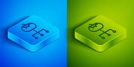 Isometric line Genetically modified food icon isolated on blue and green background. GMO fruit. Square button. Vector
