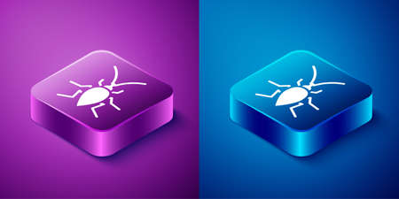 Isometric Cockroach icon isolated on blue and purple background. Square button. Vector