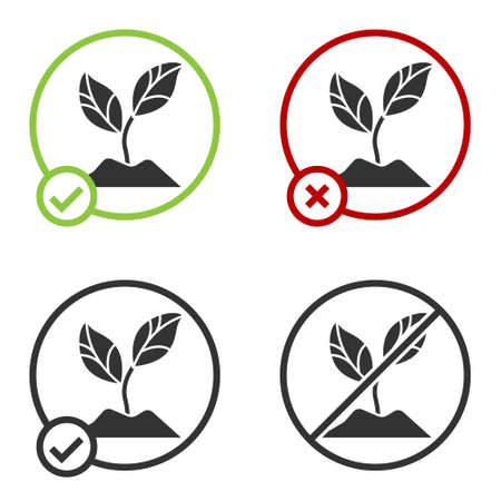 Black Plant icon isolated on white background. Seed and seedling. Leaves sign. Leaf nature. Circle button. Vector Illustration  イラスト・ベクター素材