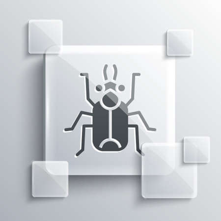 Grey Beetle bug icon isolated on grey background. Square glass panels. Vector