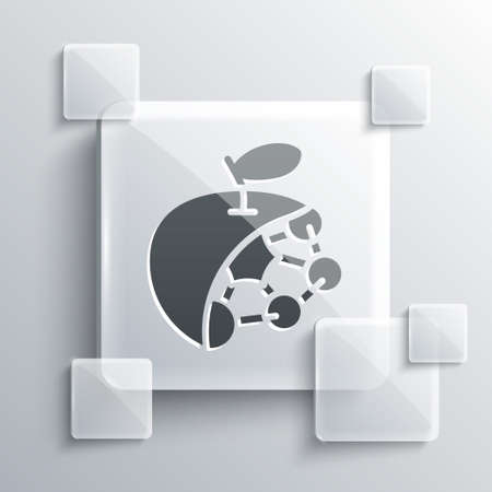 Grey Biological structure icon isolated on grey background. Genetically modified organism and food. Square glass panels. Vector Ilustrace