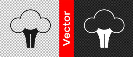 Black Broccoli icon isolated on transparent background. Vector