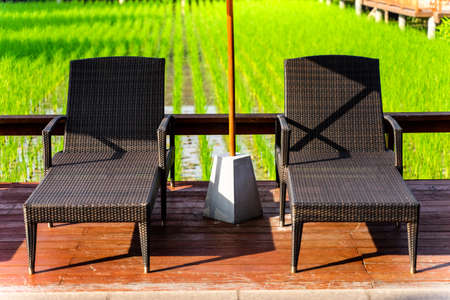 Beach chair by rice field