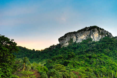 Mountain tops in the middle of the forest in the evening Imagens