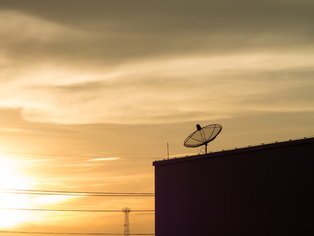 satellite tv: Small satellite dish to receive signals from satellite dish large Satellite is part of Satellite communication systems for mobile phone. Satellite TV Satellite Internet And a satellite dish for other