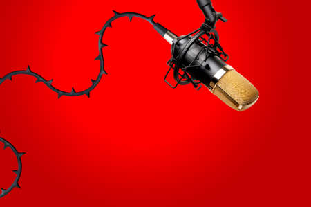 Condenser Microphone with thorns on wire like a rose. Taken against red background.