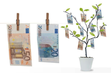 Hanging Euro notes out to dry on a line. In the background a money tree. Stock Photo
