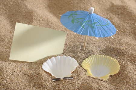 shell as deckchair at sunny beach photo