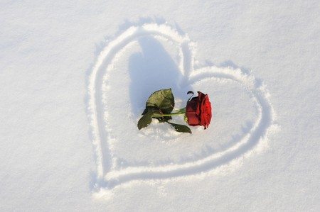 snow on the ground: heart with rose in snow