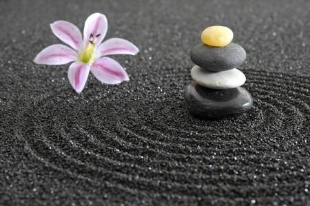 zen garden in black sand Stock Photo - 7719286