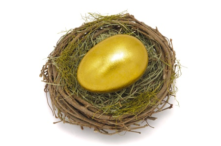 nest and golden egg Stock Photo - 9136375