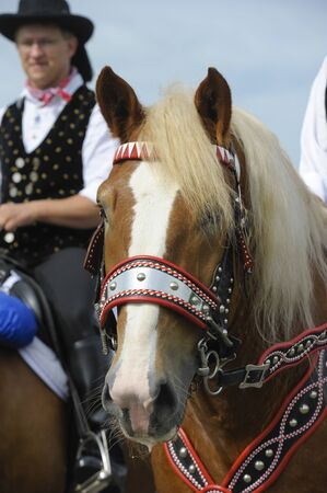 pilgrim costume: BAD KOETZTING, GERMANY - JUNE 13: 950 rider and horses took part at the biggest german annual and 599th religious horse procession -Pfingstritt- at June 13, 2011 in Bad Koetzting, Germany Editorial