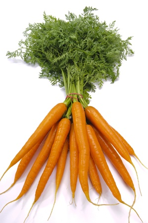 carrots isolated: bundle of carrots