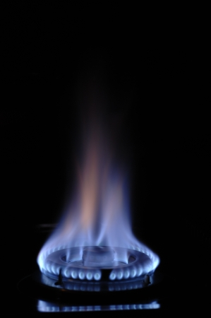 gas cooker: gas flame