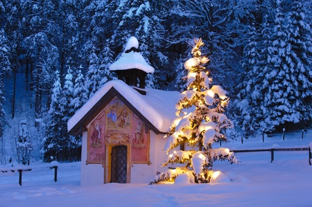 christmas church: christmas church with tree at evening