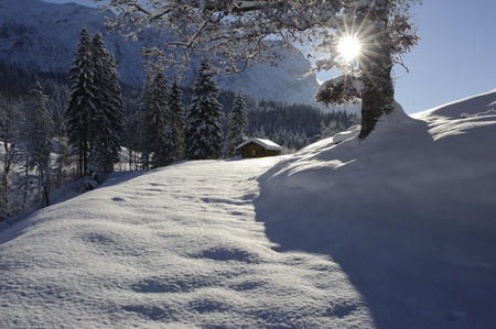 hut and tree in winter Stock Photo - 11489962