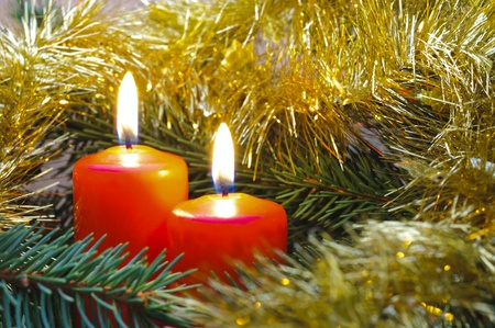 christmas candles on branch photo