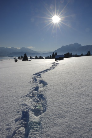 footpath in snow at alps in bavaria, germany photo