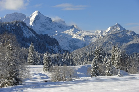 snowy background: winter landscape in bavaria, germany