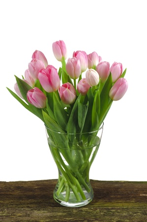 floral arrangement: bunch of tulips