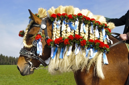 TRAUNSTEIN, GERMANY - APRIL 9: biggest annual catholic horse procession at easter, named - Osterritt - Georgiritt - in bavarian city Traunstein with 400 horses at April 9, 2012 in Traunstein,