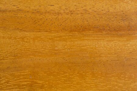 texture of teak wood photo