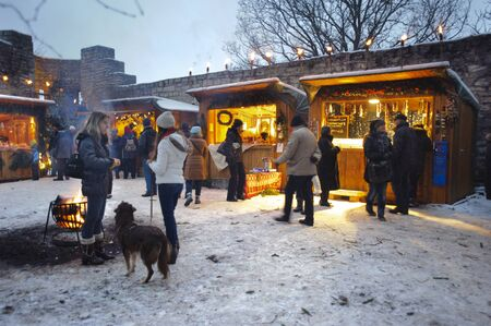 Romantic Christmas market with illuminated shops for gift and decoration on December 2, 2012 in Pappenheim, Bavaria, Germany  Stock Photo - 16768227