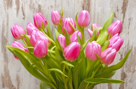 floral arrangements: bunch of easter tulips