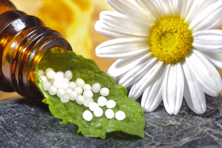 alternative medicine with homeopathic herbal pills photo