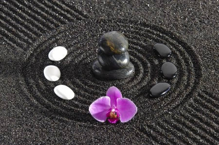 Japanese ZEN garden in sand with stacked stones and orchid flower Stock Photo - 18597480