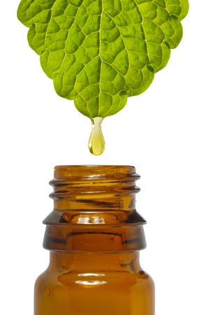 fluid drop is falling from leaf as symbol for alternative medicine Stock Photo