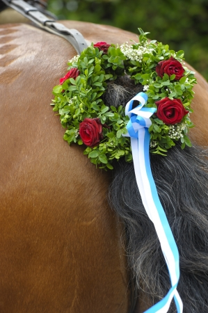 beautiful decorated bavarian horse tail photo