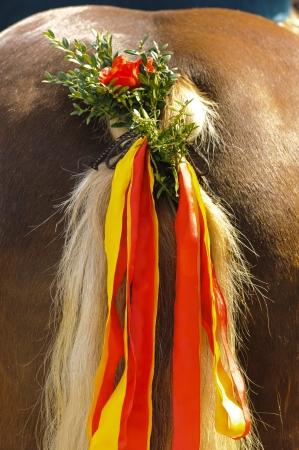 beautiful decorated bavarian horse tail photo