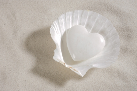 white heart in mussel over sand photo