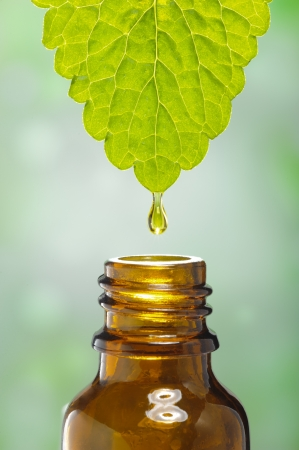 aromatherapy oils: fluid drops down from leaf as symbol for alternative herbal medicine