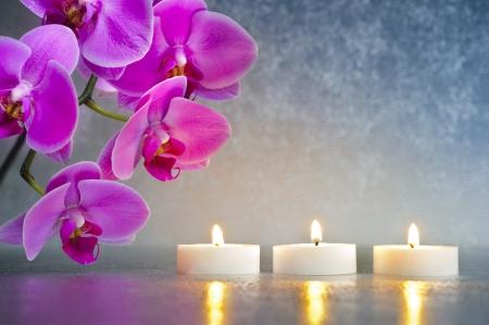 orchidee: Giappone giardino zen con orchidee e luci di candela Archivio Fotografico