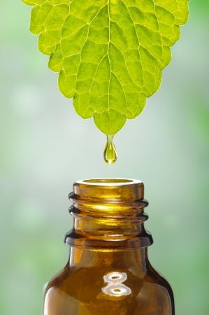 liquido scende da foglia come simbolo per la medicina a base di erbe alternative e omeopatia