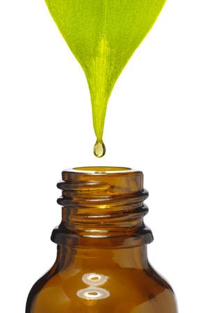 druppel valt naar beneden uit medicinale plant in fles Stockfoto