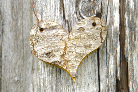 carved wooden heart on bark tree photo