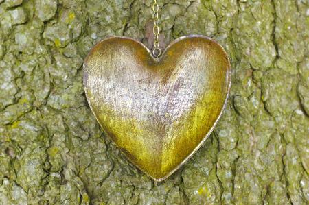 ironn heart on bark tree photo