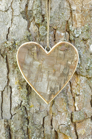 carved wooden heart on tree bark photo