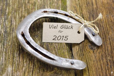 animal st  patricks day: talisman for new year Stock Photo