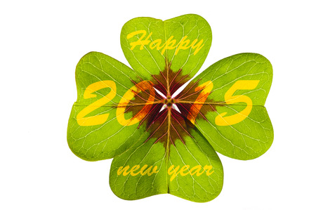 new year 2015 with clover leaf photo