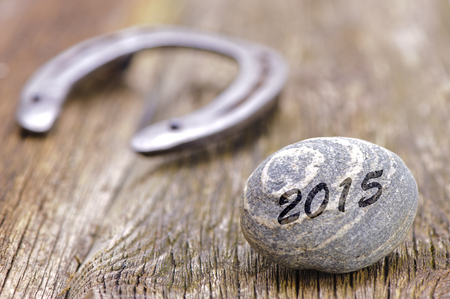 talisman: new year 2015 with horseshoe as talisman