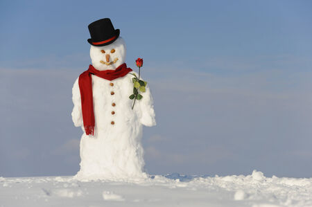 happy snowman as gentlemen with rose as symbol for love photo